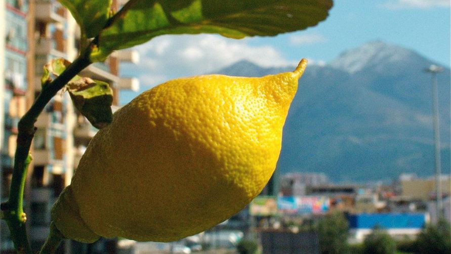 Сочный лимон.