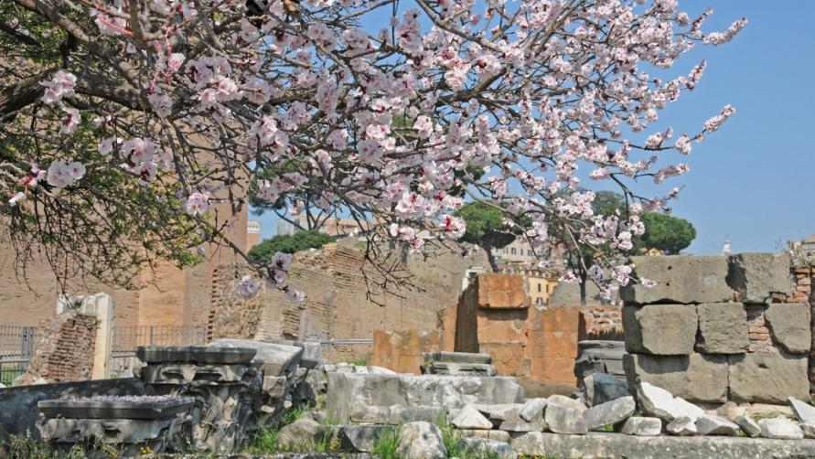 Что ждать от Рима в апреле?