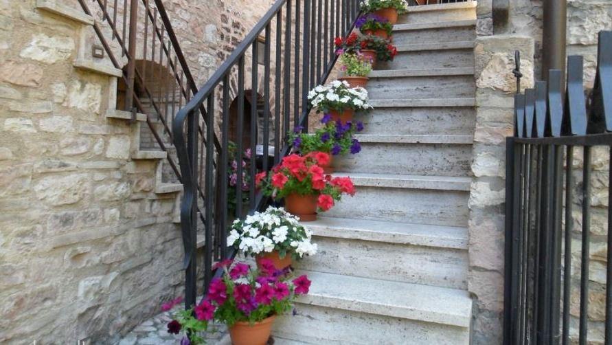 Цветы на улицах