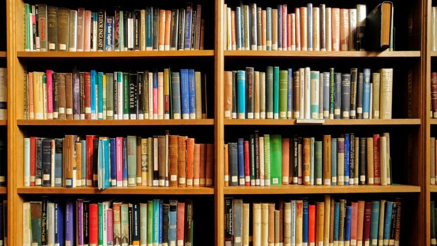 Библиотечные полки