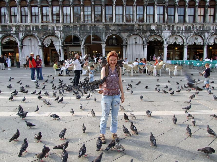 Как можно не покормить голубей на площади Святого Маркам