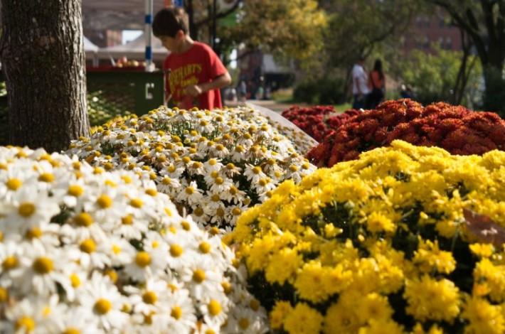 Цветочный рынок Сан-Ремо